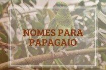 110 nomes para papagaio