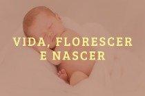 26 nomes para bebês que simbolizam vida (florescer, luz do sol, nascer, milagre ou promessa de Deus)
