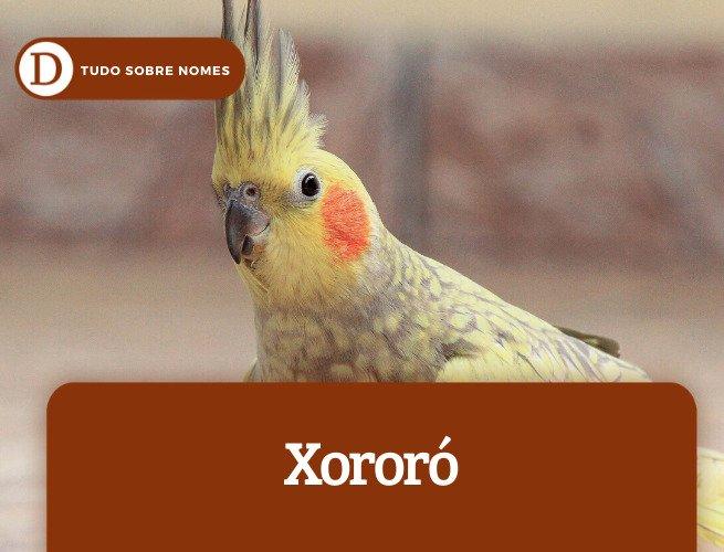 Xororó