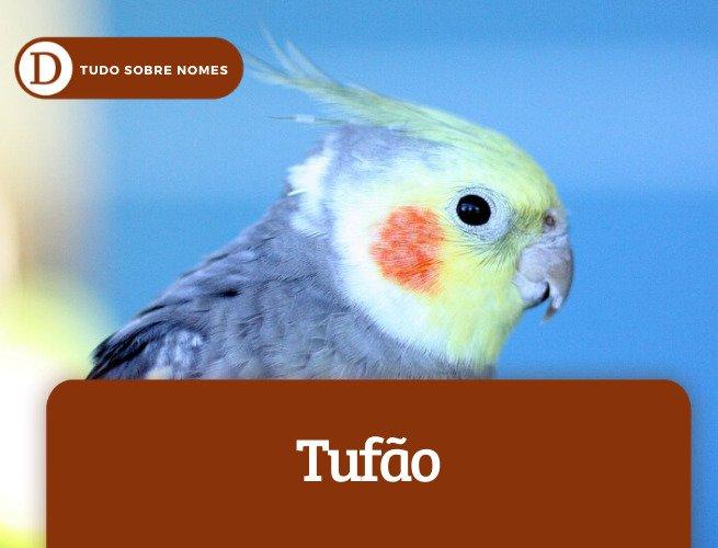 Tufão