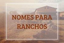 208 nomes para ranchos