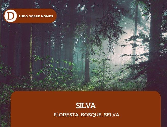 sobrenomes_silva