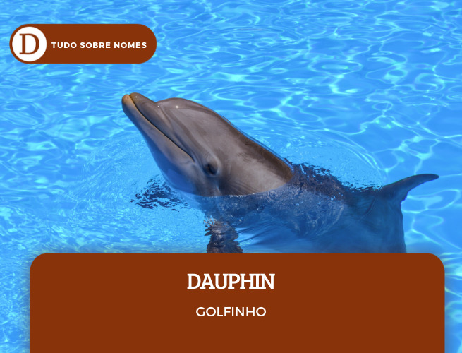SOBRENOMES FRANCESES_DAUPHIN